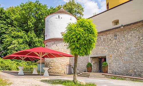 Schloss erbach DIE Maybacher 4